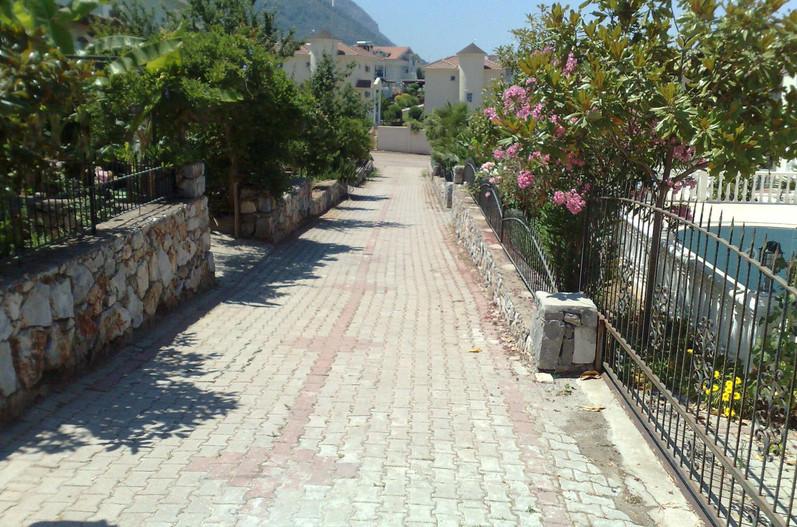 Pathway.jpeg