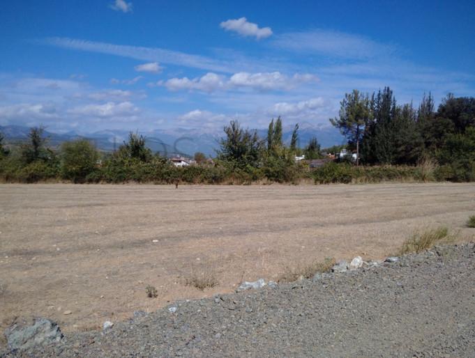 Road Access - 4 Plots