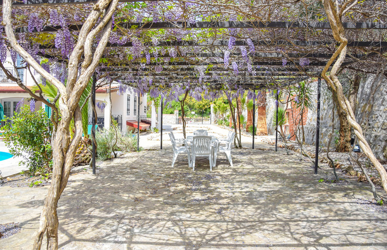 Shady Wisteria Dining Area