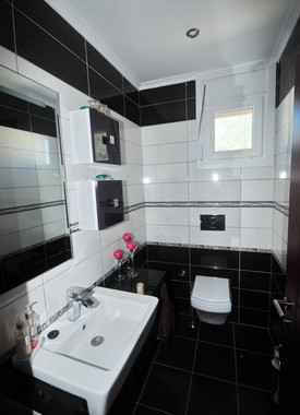 14a. downstairs wc_resize.JPG