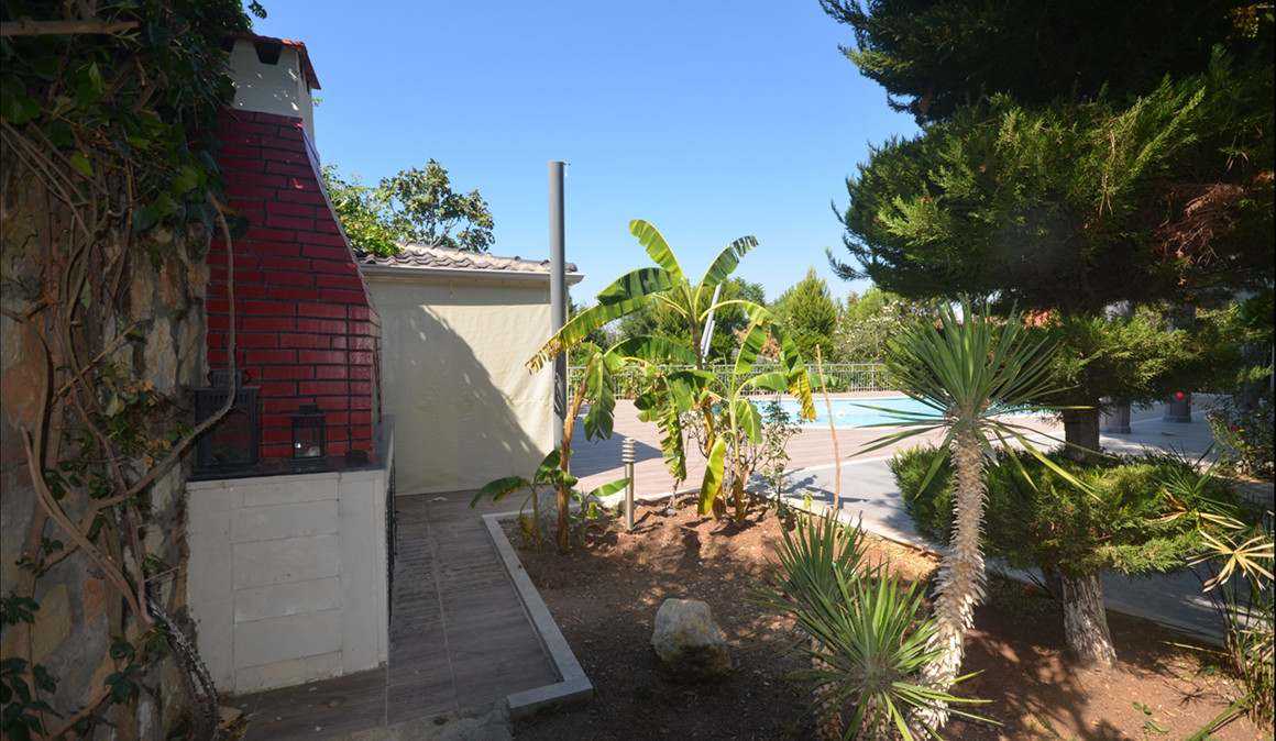 View from sheds to pool.JPG