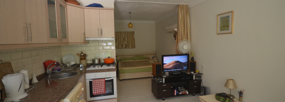 Studio Style/Open Plan Living