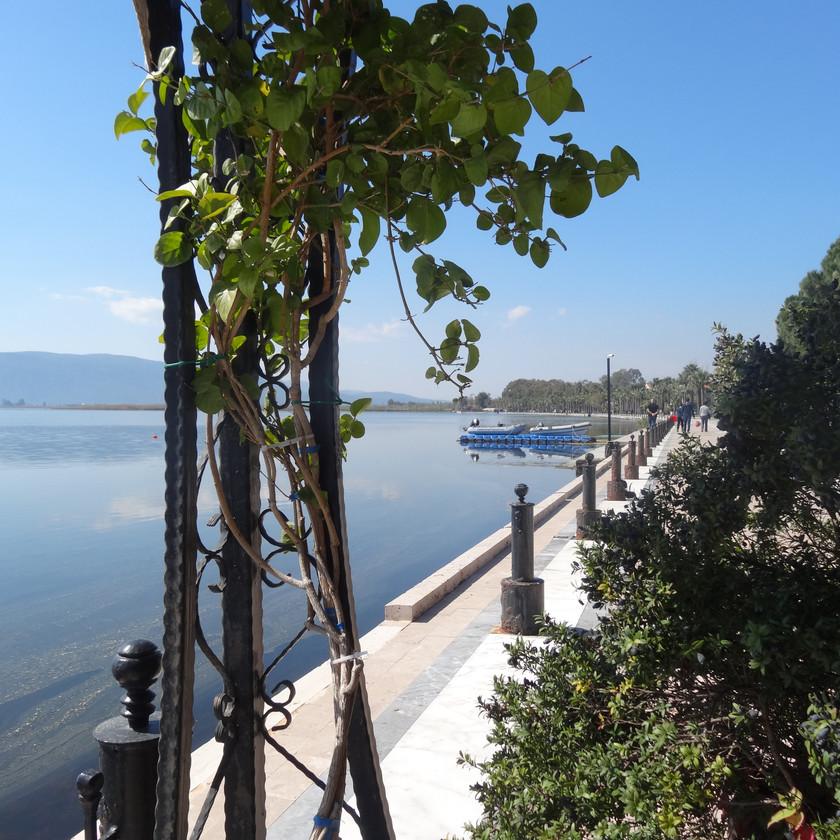Koycegiz side of lake