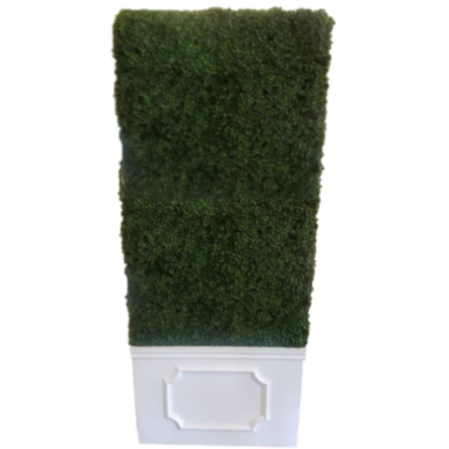 Hedge Wall with Pedestal