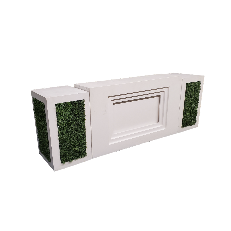 Modern Straight White Bar with Hedge Pedestals $350