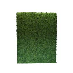 Boxwood Hedge Wal