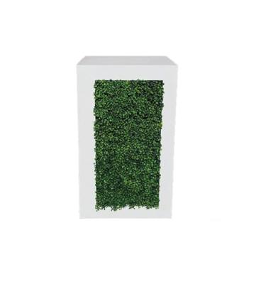Hedge Pedestal $50