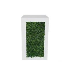 Hedge Pedestal