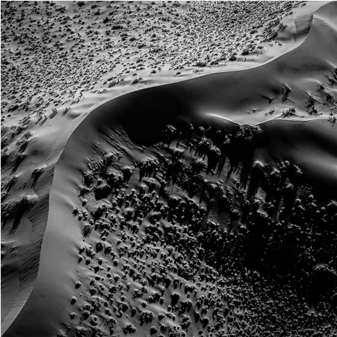 sand dune1-Edit-Edit B&W.jpg