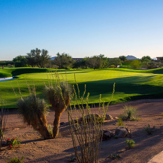 PIC-8 - Scottsdale golf.jpg
