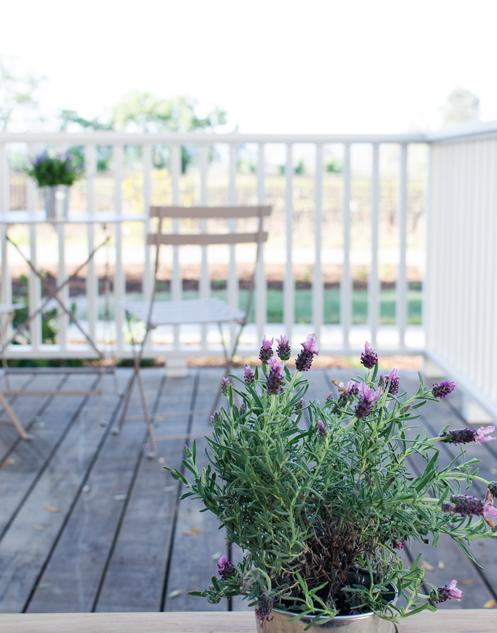 PIC-Sample terrace.png