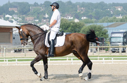 Practicing at CDI*** Deauville 2014