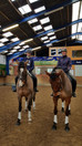 Dressage Clinics at Peter Thomsen's on 3-4 February
