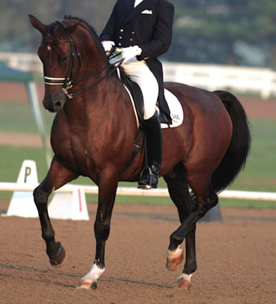 Fernando for Asian Games 1998