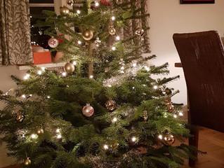 Merry Christmas!! 🎄🎁✨