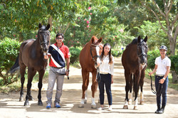 Our Dressage Gang