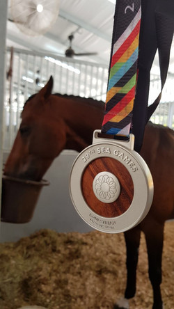 SEA Games Medal