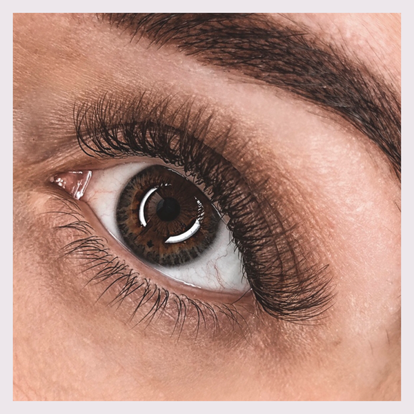Brown Lashes