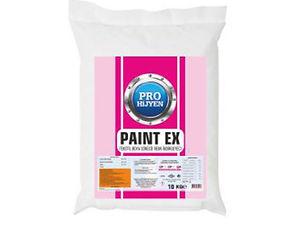 PAINT EX.jpg