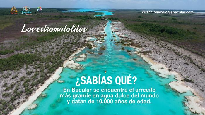 Arrecife de Estromatolitos