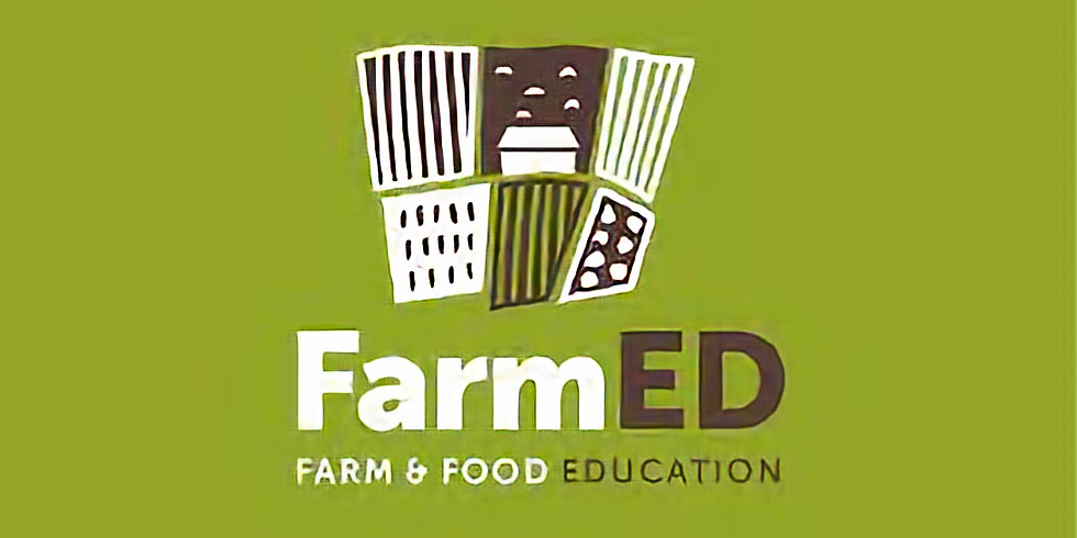 Visit to FarmED at Honeydale Farm