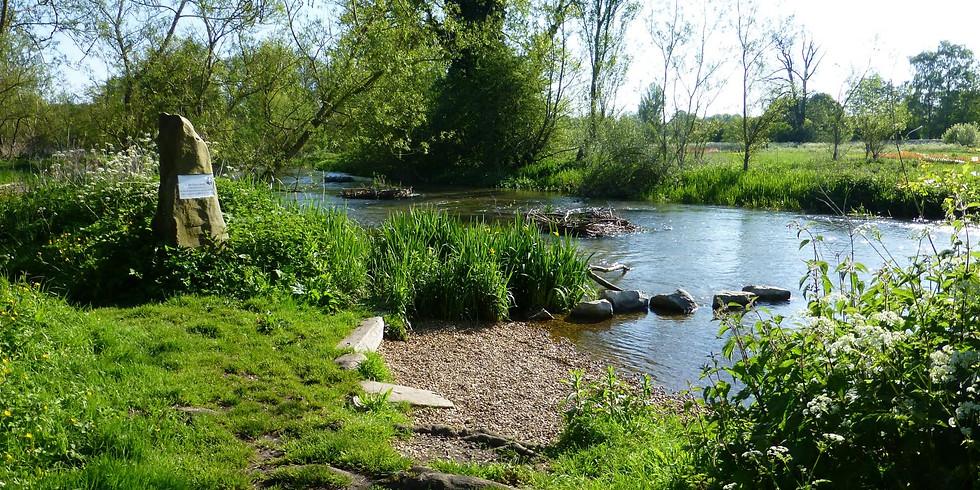 Visit to Stonebridge Wild River Reserve