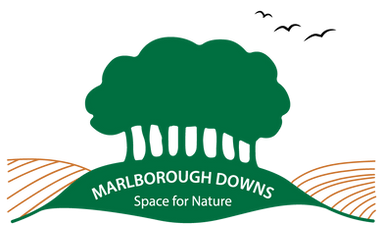 Marlborough Downs Space for Nature