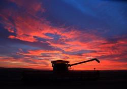 Combine sunset_F5R4403