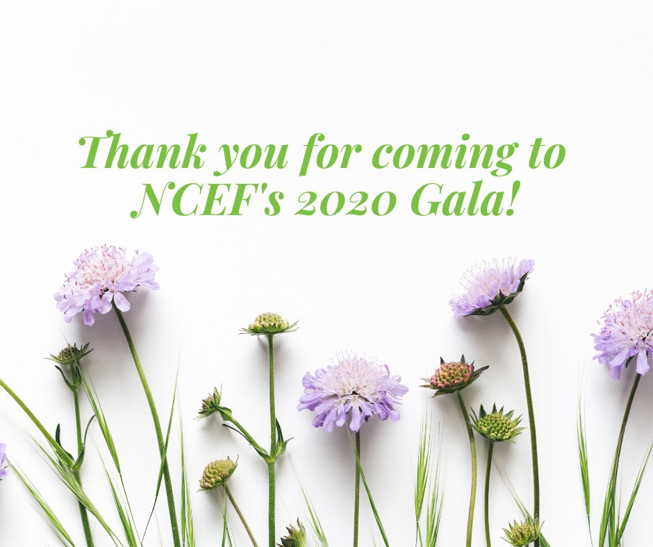 NCEF's 2020 Gala was a success, raising funds for schools across Clackamas County.