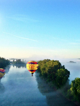 vista balloons.jpg
