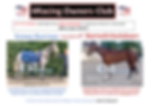 2 horse ad.PNG