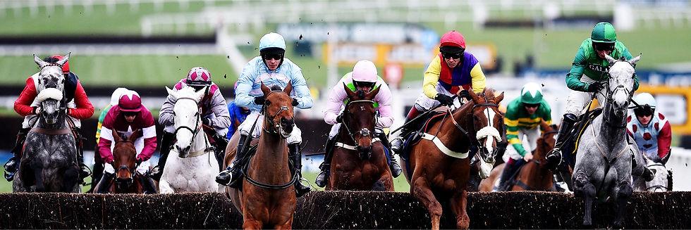 horse-racing-banner-2.jpg