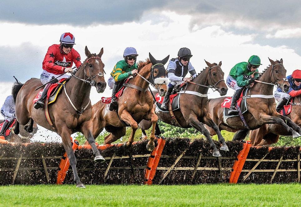 Horses jumping.jpeg