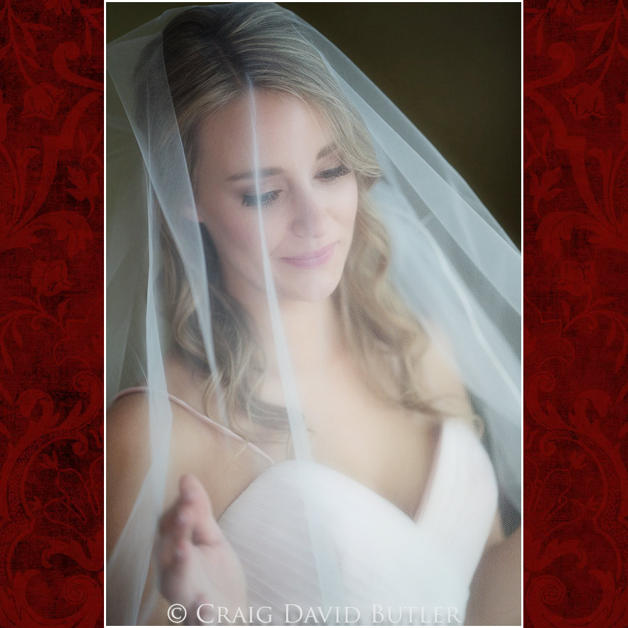 Bride Poses Wedding Photographer Michigan, St. Johns Plymouth, CDB Studios