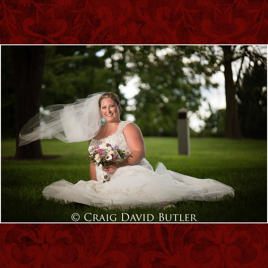 Bride Poses - Michigan-Wedding-Photographer-Novi-CraigDavidButler