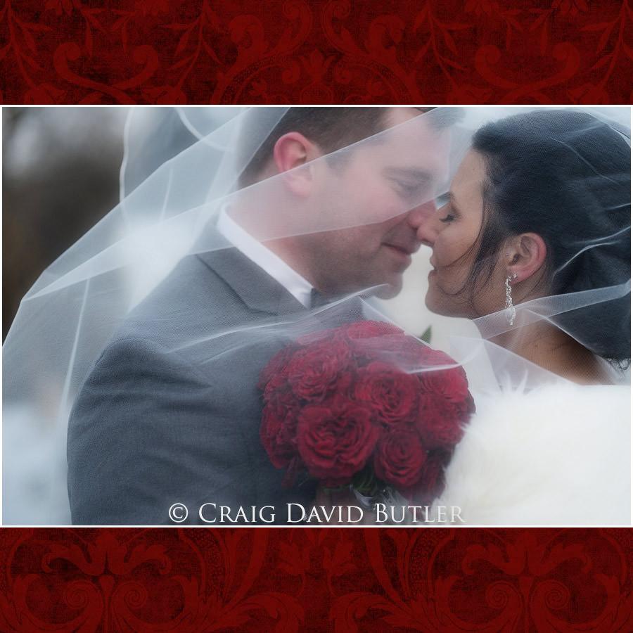 Wedding Photography Crystal Gardens Michigan Craig David Butler