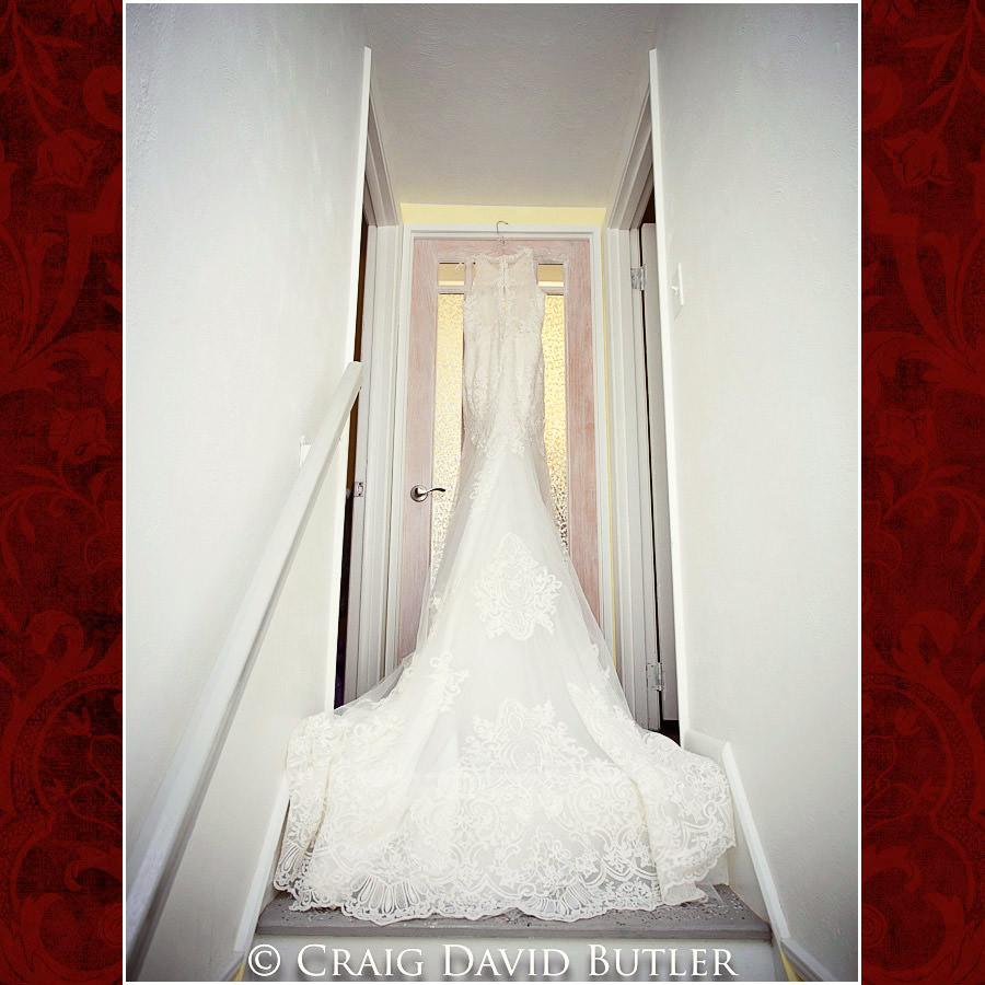 Gown Detroit Wedding Photographer - South Haven Wedding, Heritage Hall Reception, WMU, Kalamazoo MI - CDB Studios