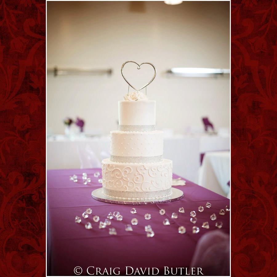 Wedding Cake - Michigan-Wedding-Photographer-Novi-CraigDavidButler