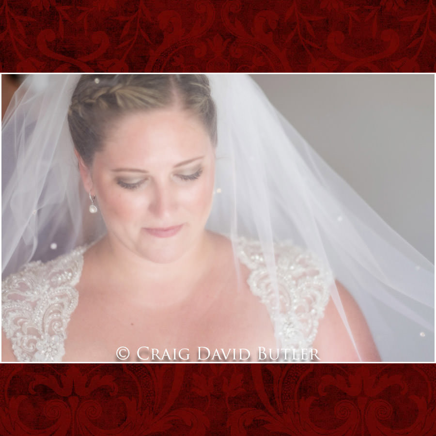 Bride Veil Photos - Michigan-Wedding-Photographer-Novi-CraigDavidButler