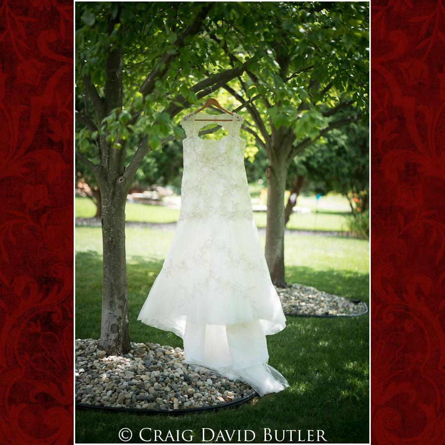 Bride Gown Michigan-Wedding-Photographer-Novi-CraigDavidButler