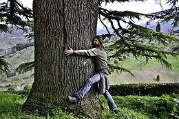 Koku enerģija
