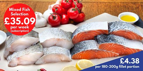 Mixed Fish Selection_large_weekly.png