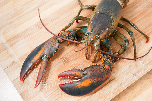 How to prep & grill lobsters