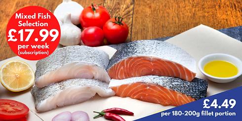 Mixed Fish Selection_weekly.png