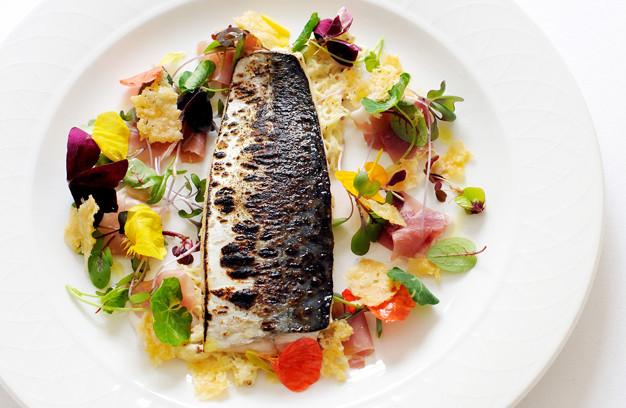 Mackerel & sardine recipes