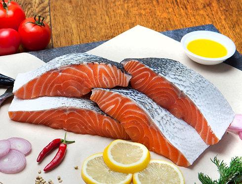 Oily Fresh Fish Selection