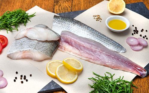 White Fresh Fish Selection
