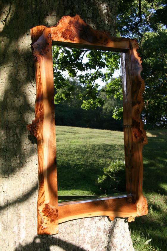 Burr Elm bevel edged mirror.