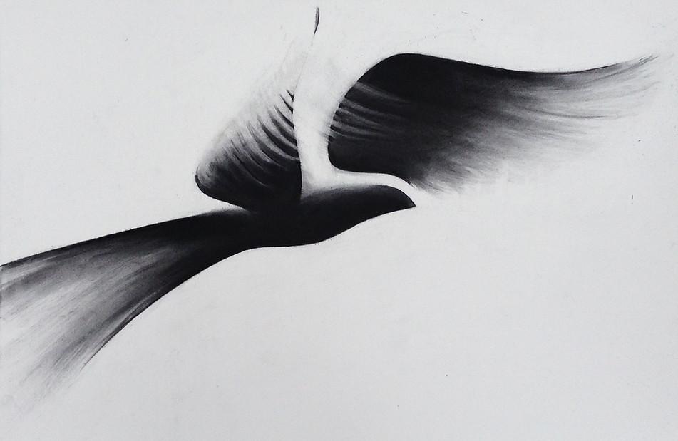 Flight IV