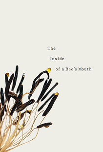 The Inside of a Bee's mouth